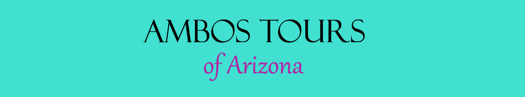 Ambos Tours of Arizona, LLC