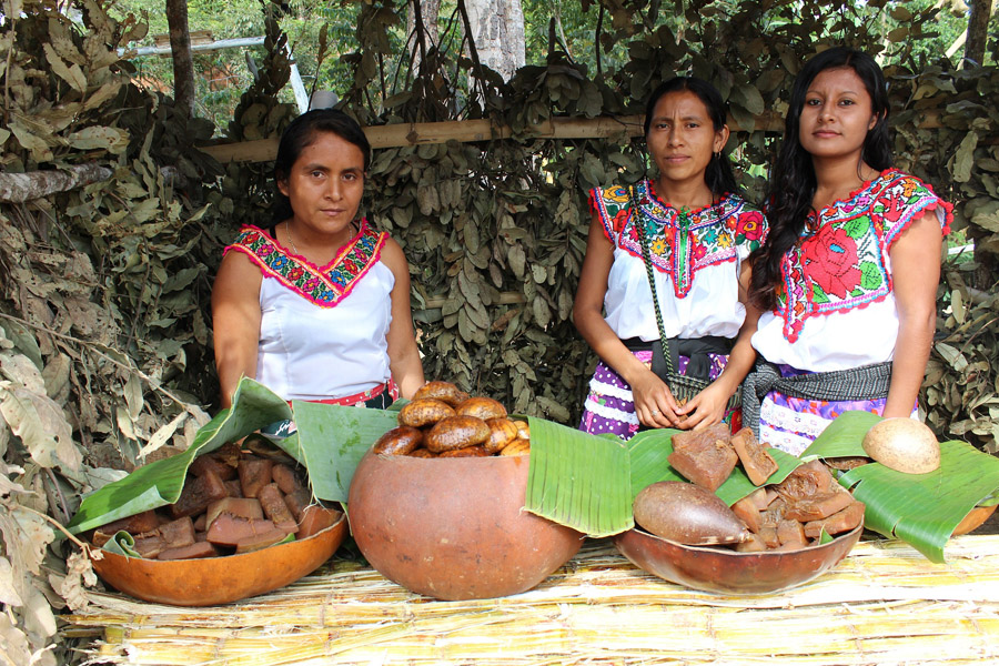 Women selling goods in Oaxaca, Mexico